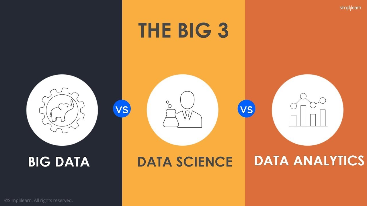 Data Science vs Data Analytics – What's the Difference?